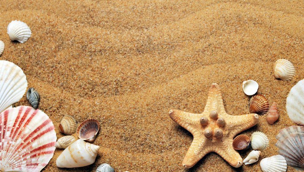 Tag på ferie selv med lav indkomst